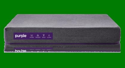 purple pet bed