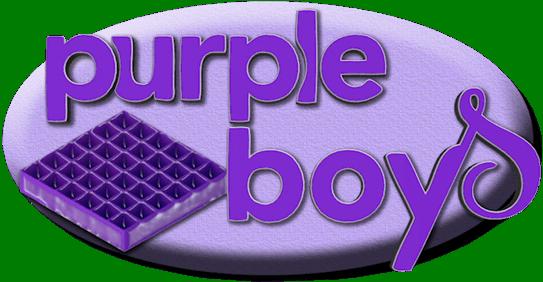 purple boys logo